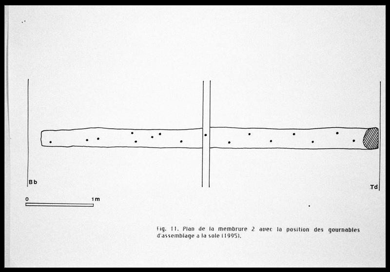Vue du dessin de la membrure 2 et de ses gournables (fouille E. Rieth).