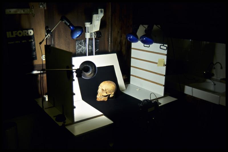 Vue du banc photographie avec un crâne humain (CNRAS).