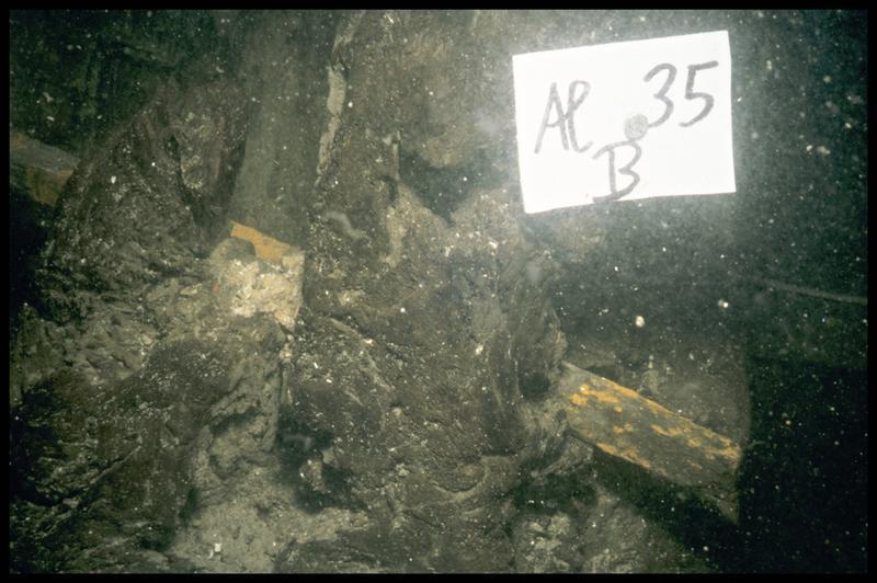Vue sous-marine de l'allonge babord 35 in situ (fouille E. Rieth).