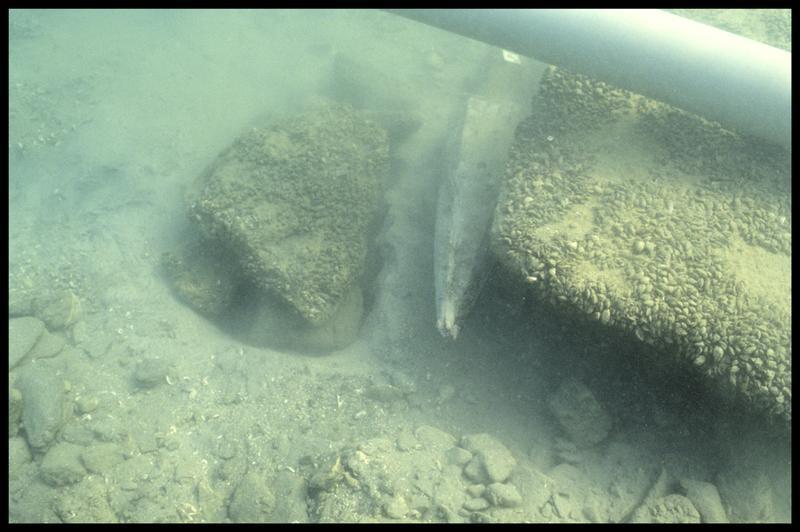 Vue sous-marine de la pointe du pieu de bois 08 sorti (fouille A. Marguet/Drassm).