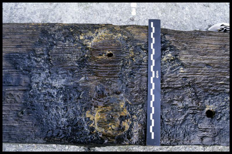 Vue de détail des traces d'un cloutage métallique sur une pièce de bois (fouille E. Rieth).