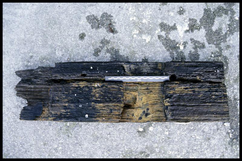 Vue d'une pièce de bois de la carène (fouille E. Rieth).