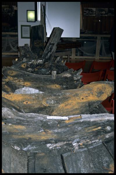 Vue de l'ensemble des prélèvements de bois de la carène (fouille E. Rieth).