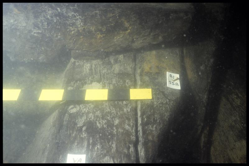 Vue sous-marine de détail l'allonge et de la varangue 55 (fouille E. Rieth).