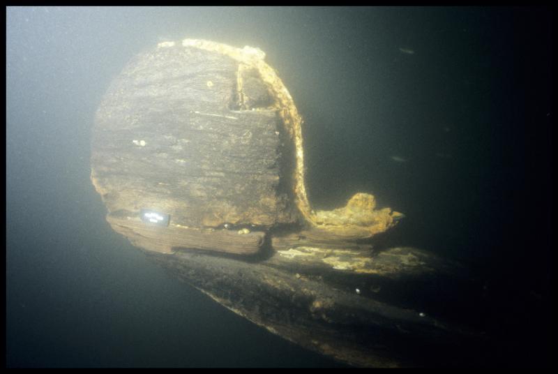 Vue sous-marine du rode in situ (fouille E. Rieth).