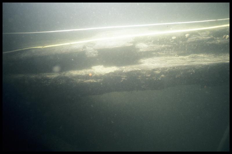 Vue sous-marine de détail du rode in situ (fouille E. Rieth).