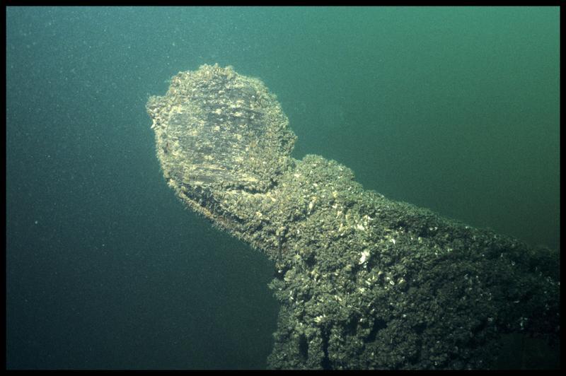 Vue sous-marine du rode de la carène (fouille E. Rieth).