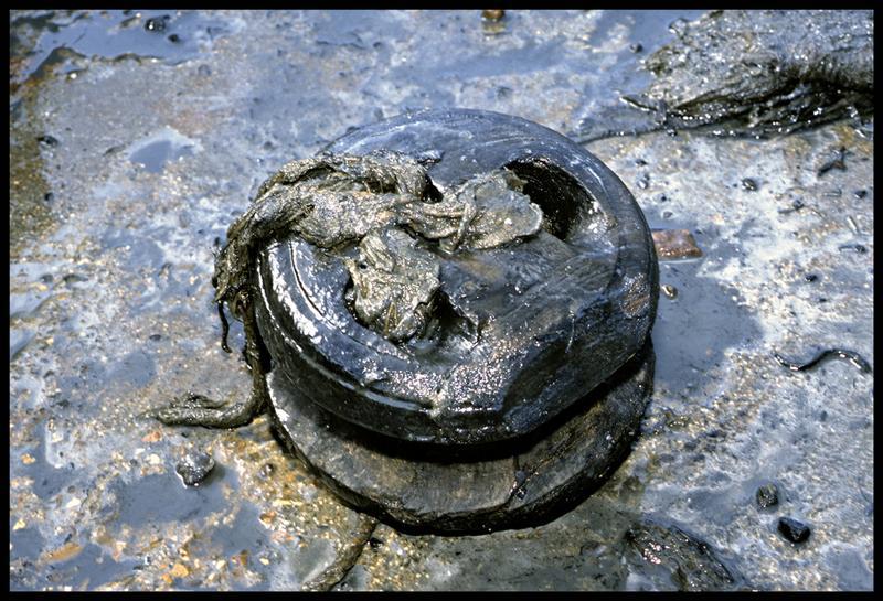 Vue d'un cap de mouton en bois avec des restes de cordage (fouille M. L'Hour/Drassm).