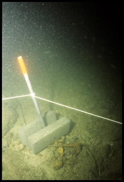Vue sous-marine de l'ancrage des piquets du carroyage (fouille M-P. Jézégou/Drassm).