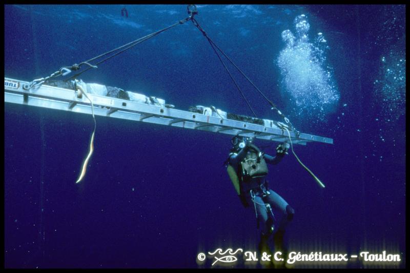 Vue sous-marine d'un plongeur accompagnant la remontée d'une membrure (fouille M-P. Jézégou/Drassm).