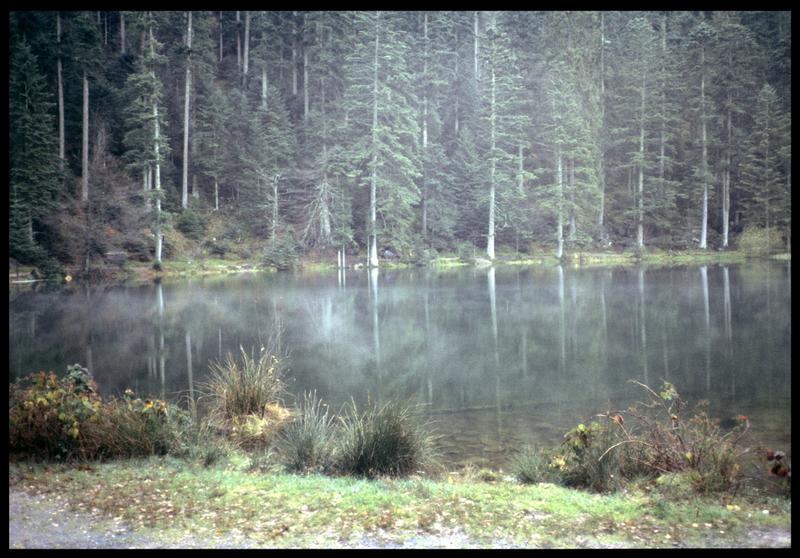 Vue du site (fouille P. Grandjean/Drassm).