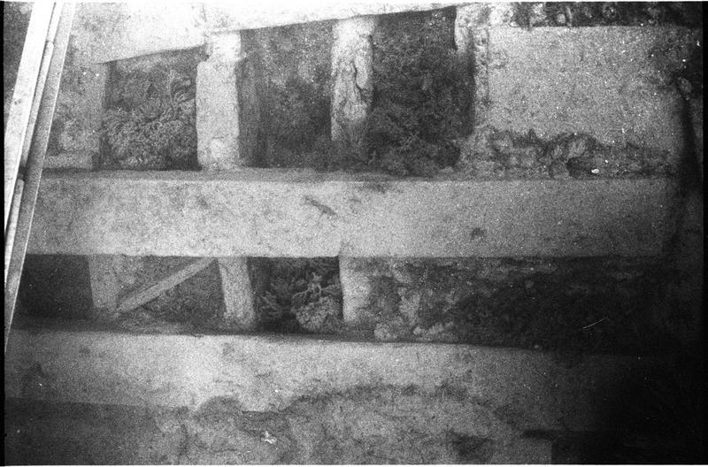 Vue sous-marine de détail de la carène (fouille J-M. Gassend).
