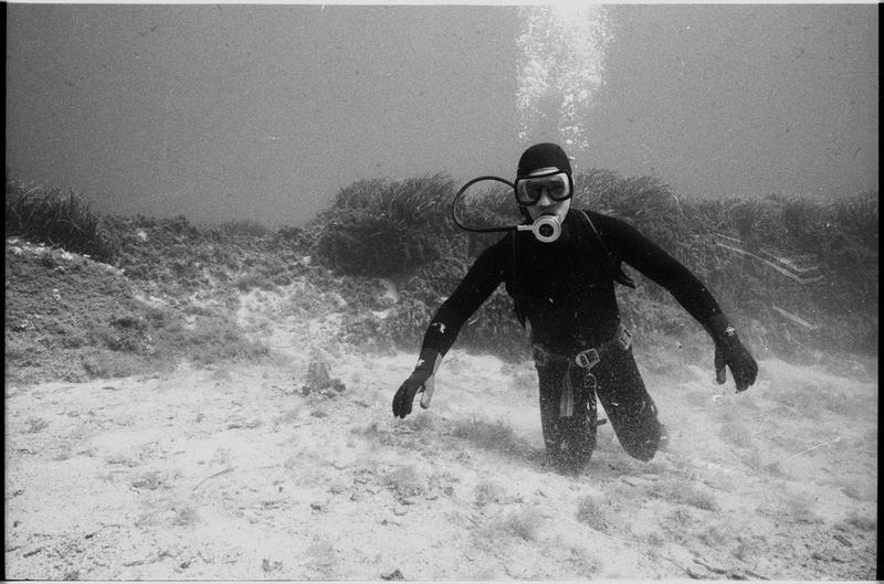 Vue sous-marine d'un plongeur (fouille A. Taniou).