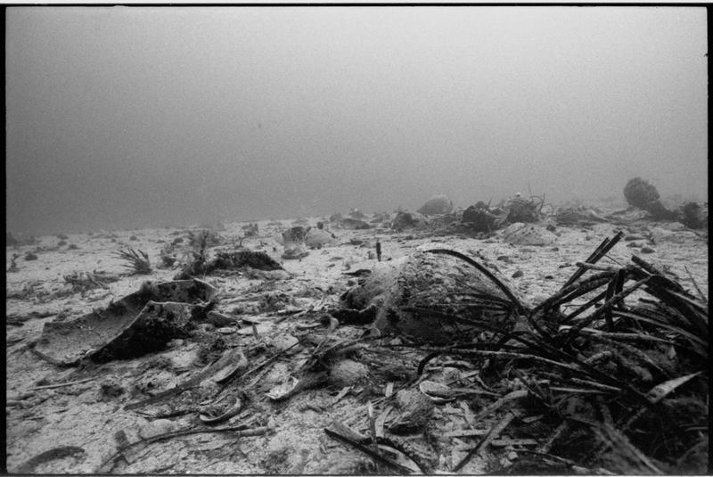 Vue sous-marine des amphores in situ (fouille H. Bernard/Drassm).