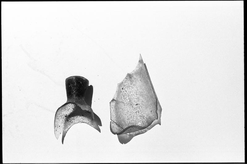 Vue de deux fragments d'un flacon de verre (fouille M. L'Hour/Drassm).