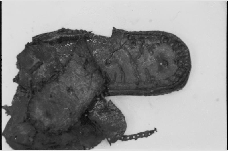 Vue d'une chaussure (fouille M. L'Hour/Drassm).