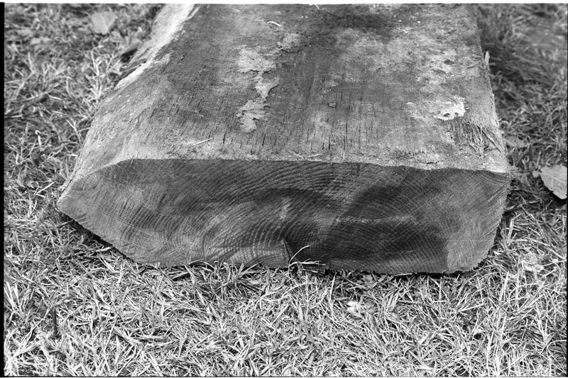 Vue de la section d'un élément de la carène en bois (fouille M. L'Hour/Drassm).