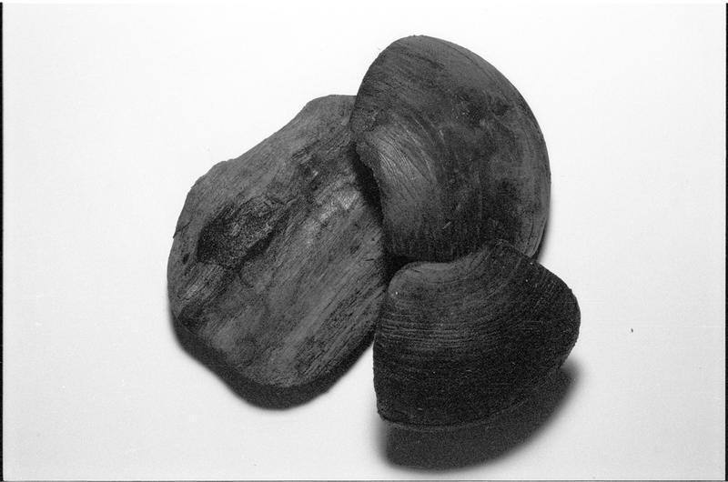 Vue d'un lot de trois éléments d'accastillage de bois (fouille M. L'Hour/Drassm).