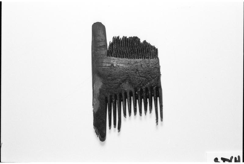 Vue d'un peigne de bois (fouille M. L'Hour/Drassm).