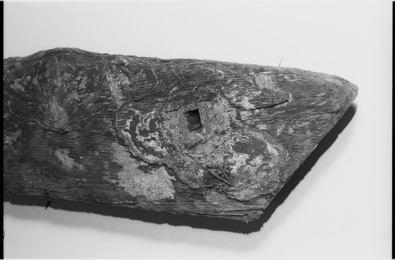 Vue de détail d'un élément de bois (fouille M. L'Hour/Drassm).