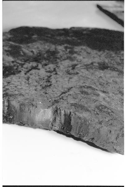 Vue de détail d'un fragment de panneau de bois (fouille M. L'Hour/Drassm).
