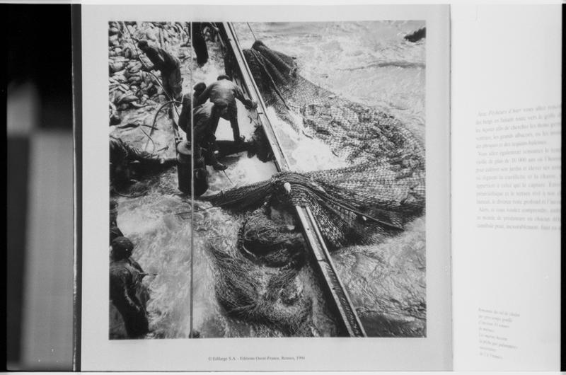 Vue d'une photographie de la pêche au thon sur un chalutier.