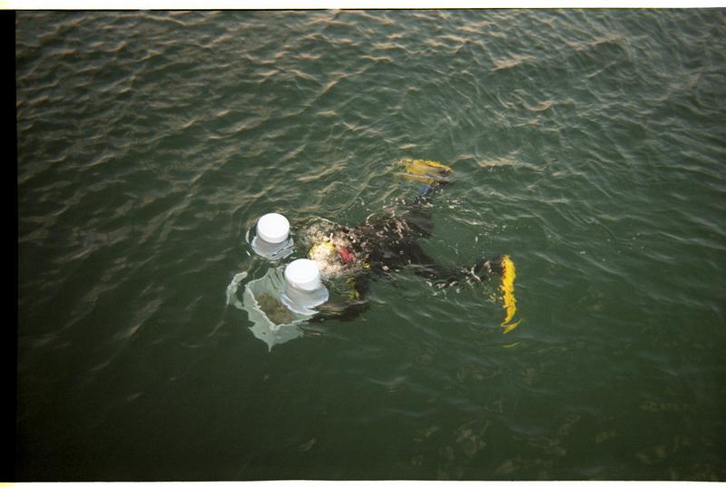 Vue d'un plongeur en surface (fouille M. Guyon).