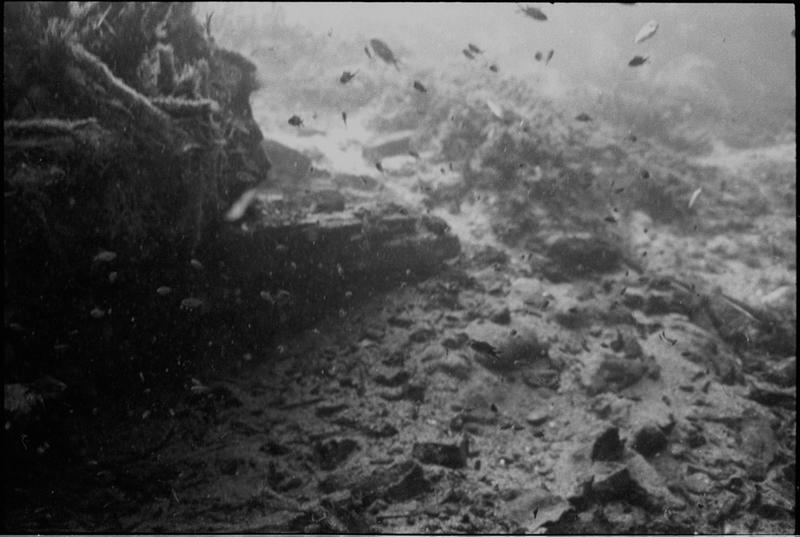 Vue sous-marine des lingots de fer et fragments d'amphore in situ (fouille L. Long/Drassm).