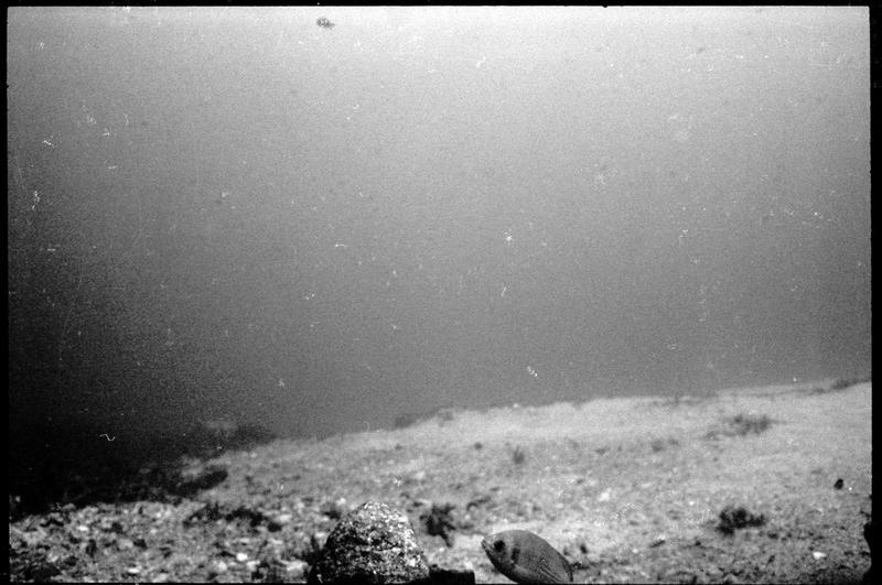 Vue sous-marine des fonds autour du site (fouille L. Long/Drassm).