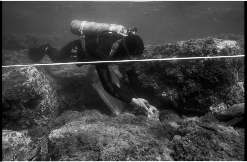 Vue sous-marine d'un plongeur ramassant un fragment de céramique (fouille L. Long/Drassm).