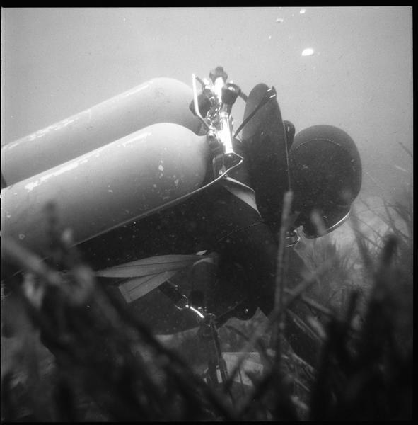 Vue sous-marine d'un plongeur (fouille L. Long/Drassm).