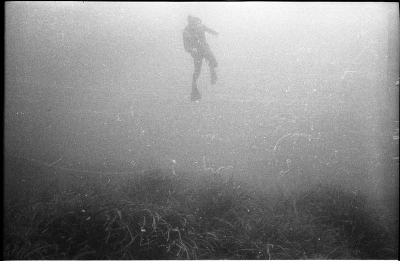 Vue sous-marine d'un plongeur (fouille A. Tchernia).