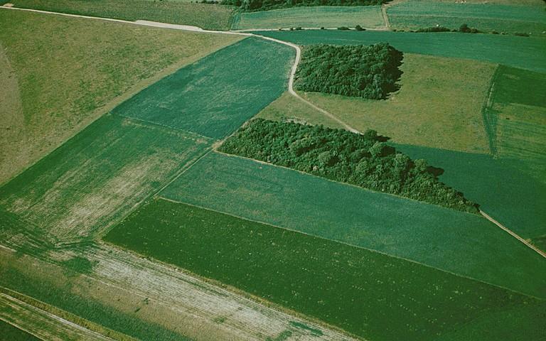 Deux enclos circulaires espacé d'environ 150 m. A proximité de l'enclos sud, on distingue des fosses et des points.