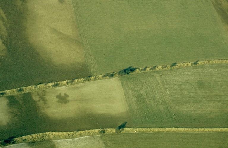 Plusieurs grands enclos circulaires et grandes fosses.