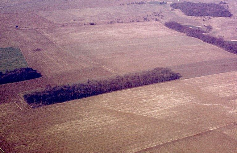 Nécropole de l'Age du Bronze constituée d'un ensemble de trois enclos circulaires au centre, un enclos circulaire isolé, environ 50 m à l'ouest et un enclos circulaire double 50 m à l'est.