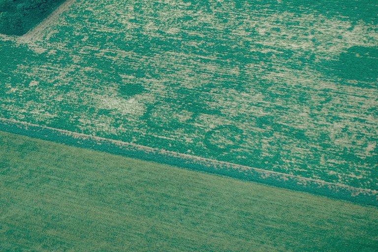 Sur le plateau, enclos circulaires peu marqués et fosses.
