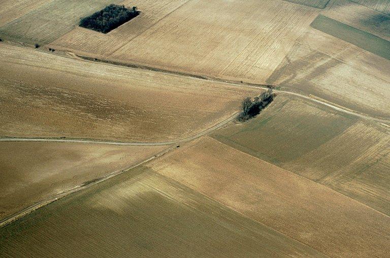 Un bois rectangulaire de 700 x 500 m est installé à cheval sur la voie romaine. Selon R. Agache, il pourrait réoccuper l'emplacement d'un camp romain dont les fossés auraient été un obstacle à la mise en culture.