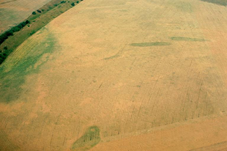 L'intérieur de l'oppidum reste mal connu. Des fouilles ont été menées sur 200 m2 environ dans des structures d'habitat datables de La Tène finale et situées très près du rempart extérieur : trous de poteaux, silos, foyer avec remplissages secondaires constitués de débris céramiques et vestiges osseux témoignent de l'existence d'un habitat permanent à l'intérieur de l'oppidum. Les prospections ont livré un matériel homogène de la période Auguste-Tibére et un ensemble de monnaies gauloises liés à la circulation militaire.