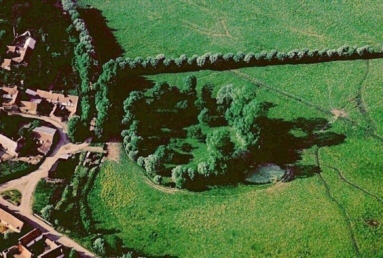 Grand cercle d'arbres dans le marais à l'amorce du gué de Blanquetaque (probablement à l'emplacement d'une fortification médiévale circulaire pour la défense de ce gué).