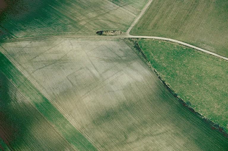 Plusieurs fermes indigènes à enclos à dominante curviligne ou rectiligne.