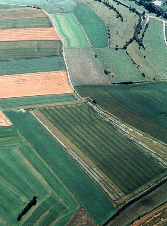 Grands enclos irréguliers aux contours courbes.