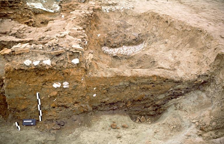Four 12. La chaufferie du premier four est conservée partiellement. Il s'agit d'une grande fosse aux contours irrégiliers d'environ 5,50 m de diamètre.