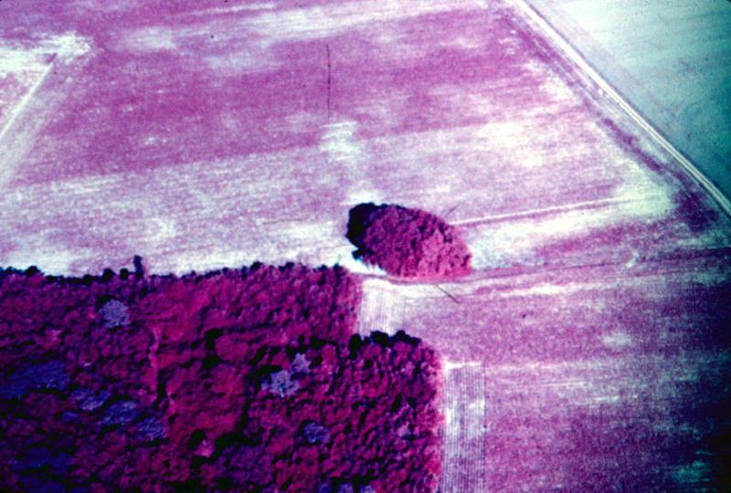 Enclos matérialisé par une levée de terre