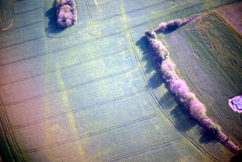 Vicus gallo-romain, vue de la zone d'habitat au sud de la voie.