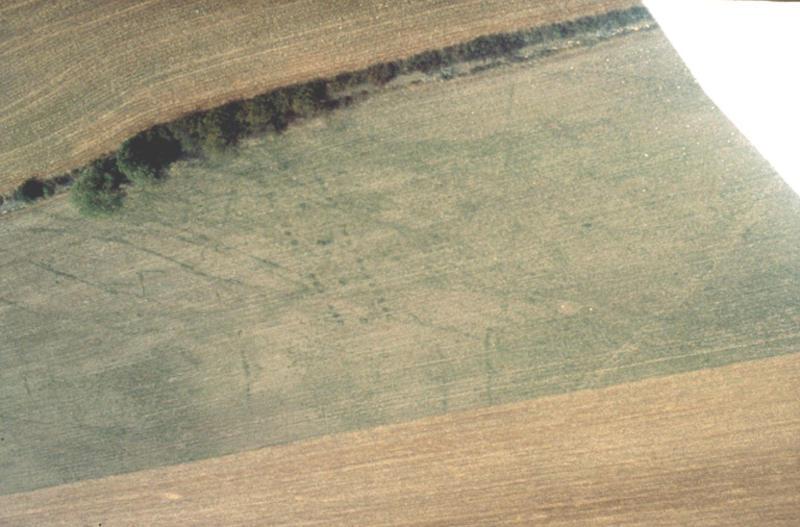Grande maison et fossés, traces de trous de poteau.