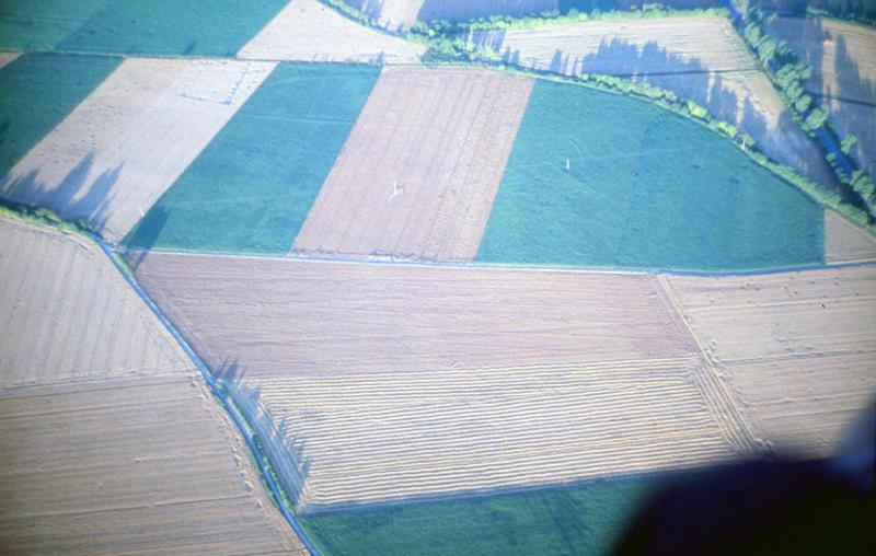 Ancien parcellaire et autre structures en creux, fosse.