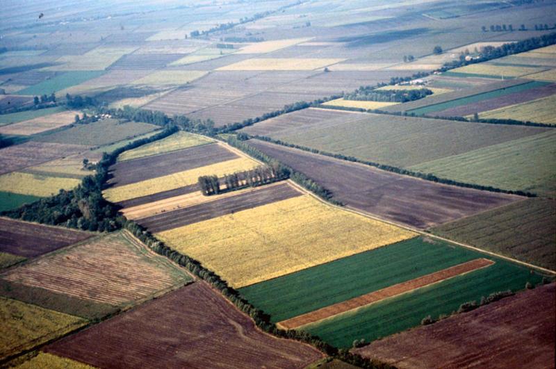 Vue générale du tracé de la voie romaine.