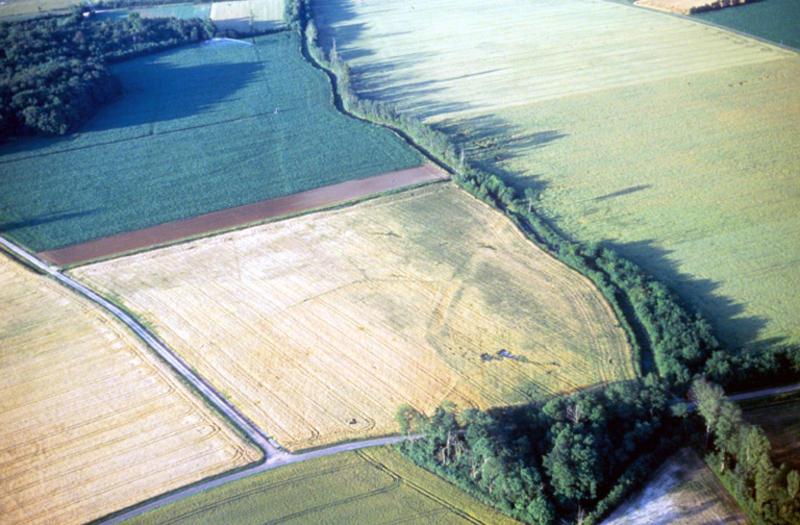 """Habitat gallo-romain situé à proximité du temple du """"Parquet""""."""