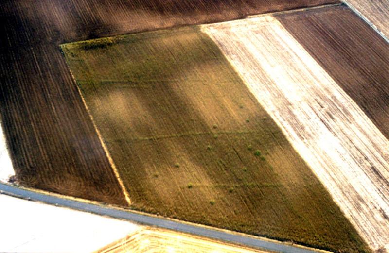 Fossés parallèles, semis de fosses parfois alignées.