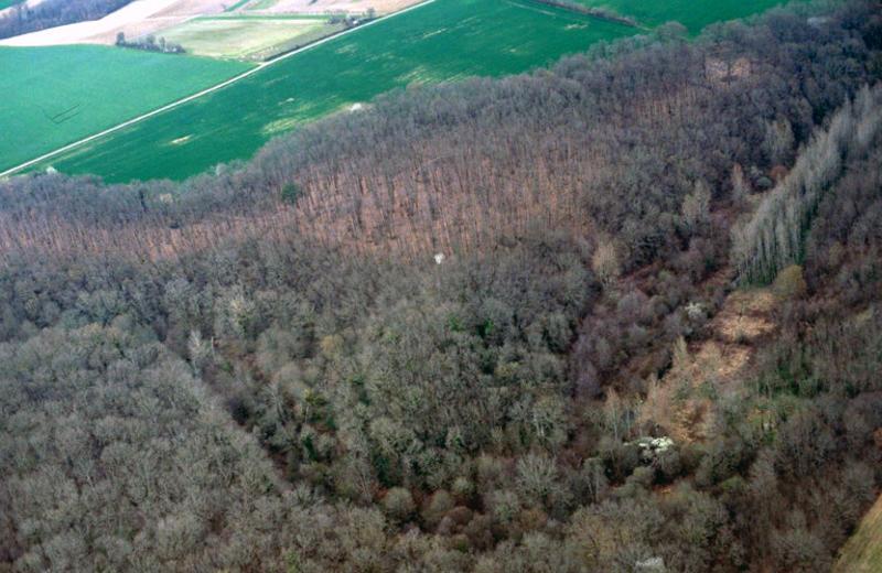 Configuration d'éperon barré dans un méandre de ruisseau de Saint Laurent de Jourdres, dans la forêt de Verrières